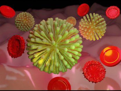 Voorlopig geen activiteiten i.v.m. coronavirus